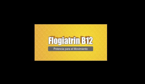 FLOGIATRIN B-12